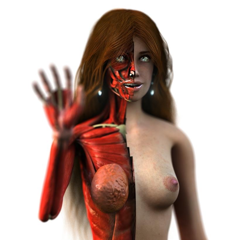Anatomy Woman Anne 3D Model