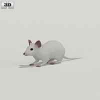 Mouse White 3D Model
