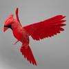 06 04 09 407 cardinal r1 4
