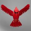 06 04 09 867 cardinal r5 4