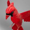 06 04 10 214 cardinal r6 4
