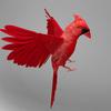 06 04 10 86 cardinal r4 4