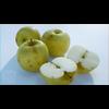 01 37 16 731 01 apples01 a mk3d 4