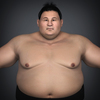 22 34 19 570 realistic japanese sumo 02 4