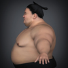 22 34 20 829 realistic japanese sumo 03 4