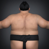 22 34 21 392 realistic japanese sumo 08 4