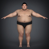 22 34 21 687 realistic japanese sumo 06 4