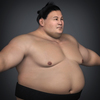 22 34 23 150 realistic japanese sumo 12 4