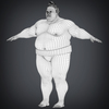 22 34 31 142 realistic japanese sumo 15 4