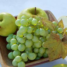 Fruit Bowl Grapes Leaves Apples Cut Damast Knife 3D Model
