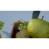 05 15 33 270 fruitbowl mk3d 05 4