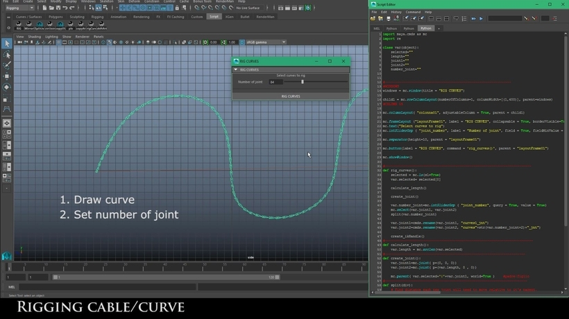rig nurbs curve    cable for maya