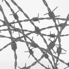Barb Wire 3D Model