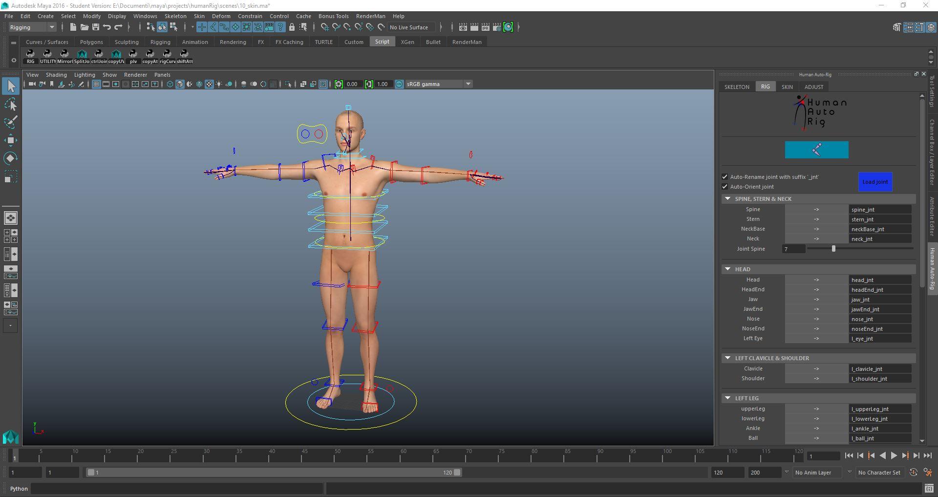 Human Character Rig in 1 minute (skeleton, rig & bind skin in 1 minute) for  Maya