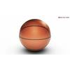 00 37 14 485 basketball arena copyright 00009 4