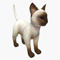 kitty cat kitten 3D Model