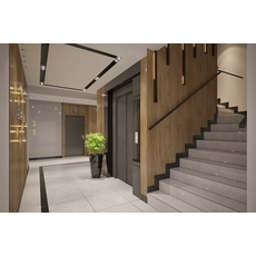 Interior design of Apartments building Entrance Hall Area 3D Model