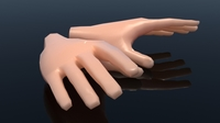 Cartoon Hands 3D Model