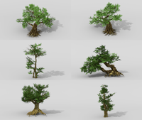 Banyan set 3D Model