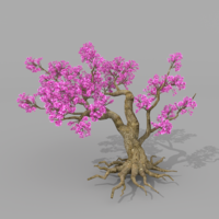 Peach blossom tree 2 3D Model