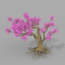 Peach blossom tree 2 3D Model