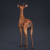 02 08 18 544 low poly realistic deer 04 4