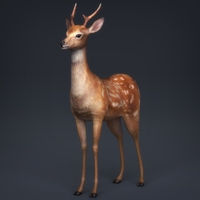 Game Ready LowPoly Realistic Deer 3D Model