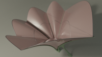 Lily canopy 3D Model