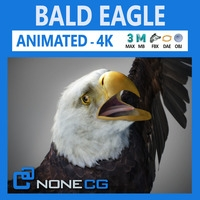 Animated Bald Eagle 3D Model