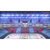 06 17 09 109 icehockey arena copyright 00004 4