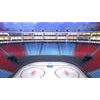 06 17 11 600 icehockey arena copyright 00006 4