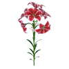 04 41 06 528 flower lily 0017 4