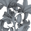 04 44 18 914 flower lily wareframe 0009 4