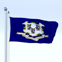 Animated Connecticut Flag 3D Model