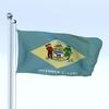 09 41 42 165 flag 0008 4