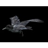 11 14 03 945 crows8 4