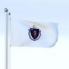 05 36 11 39 flag 0072 4