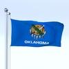 09 39 21 960 flag 0056 4