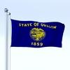 09 51 44 345 flag 0056 4