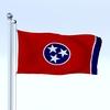 02 45 02 371 flag 0056 4