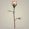 23 29 32 906 realistic rose collection 07 4