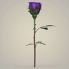23 29 33 27 realistic rose collection 09 4