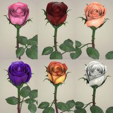 Rose Flower Collection 3D Model
