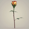 23 29 33 726 realistic rose collection 10 4