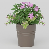 Vray Ready Potted Plant 3D Model