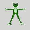 15 13 34 472 frog2 4