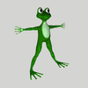 15 13 56 695 frog3 4