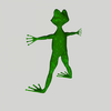 15 15 30 177 frog7 4