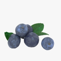 blueberry 3D Model