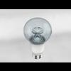 16 20 19 177 clear bulb2 4